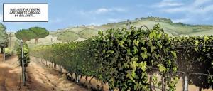Da qualche parte tra Castagneto Carducci e Bolgheri